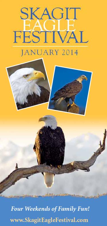 2014_Skagit_Eagle_Festival_Brochure_pdf